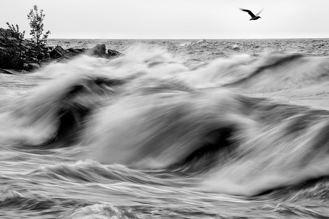 beach-monochrome-ocean-sea-surf picture material