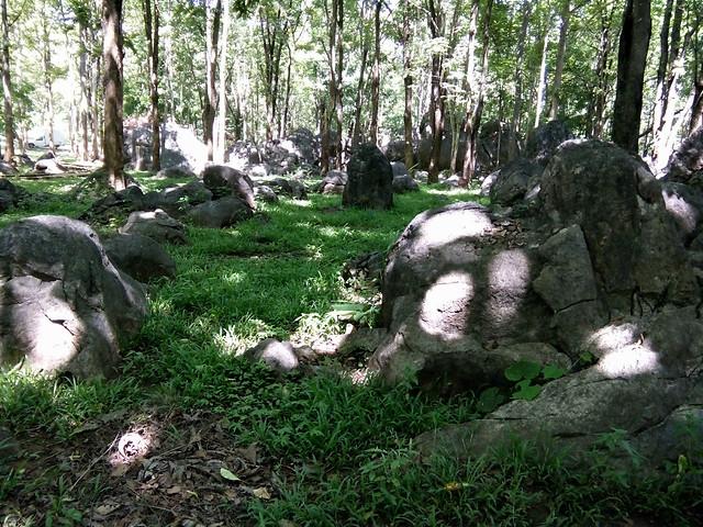 stones-park picture material