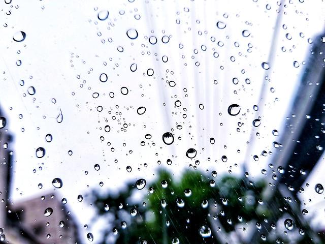 rain-drop-wet-dew-droplet picture material