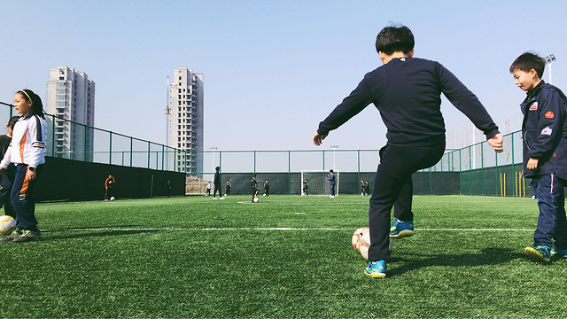 soccer-football-competition-stadium-ball picture material