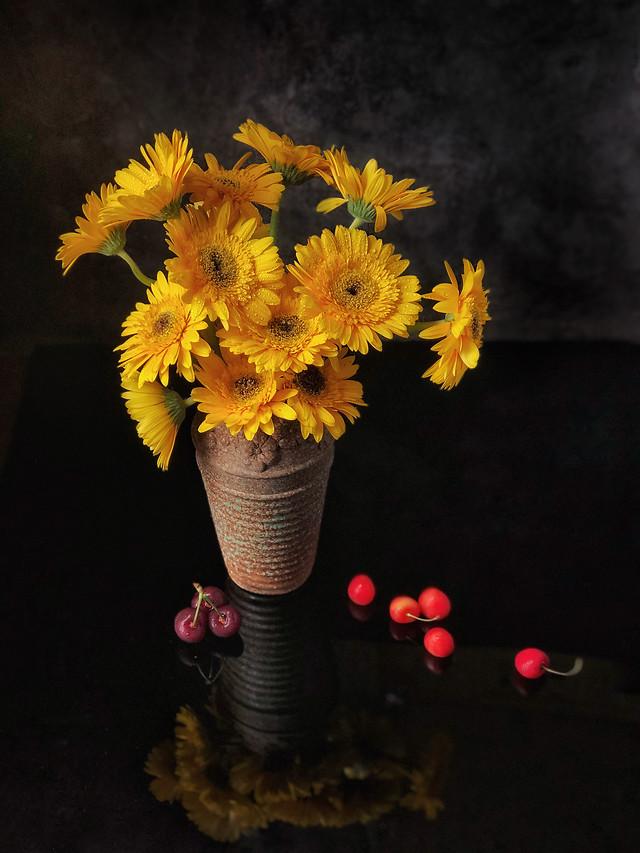 鲜花 图片素材