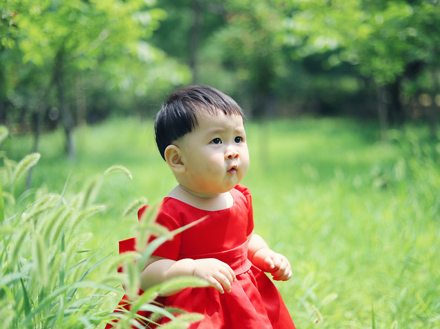 child-nature-grass-summer-park picture material