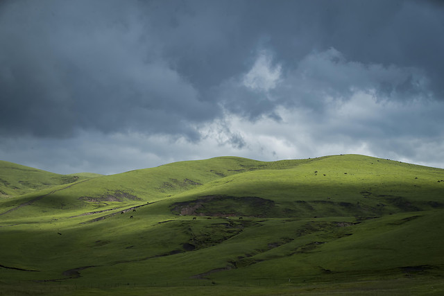 no-person-landscape-grassland-highland-nature 图片素材