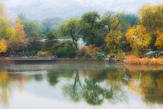 tree-fall-river-lake-reflection 图片素材