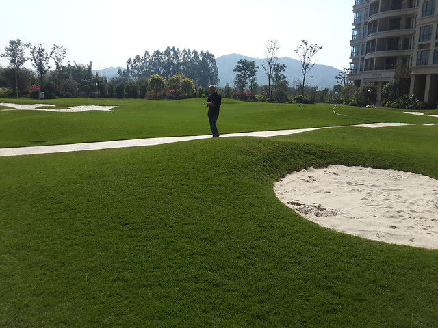 golf-putt-golfer-fairway-competition 图片素材