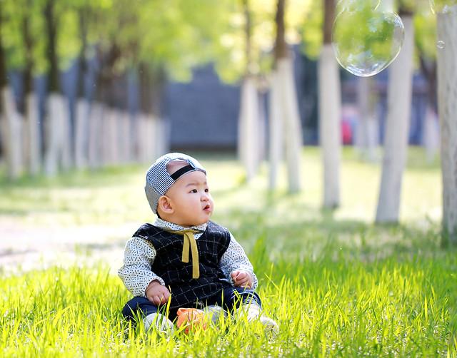 child-grass-fun-joy-nature picture material