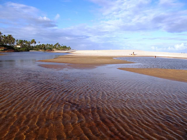 sand-no-person-water-beach-seashore picture material