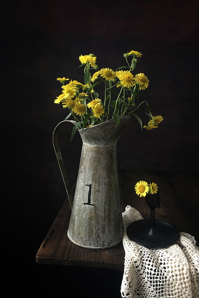 vase-still-life-flower-no-person-flora picture material