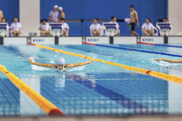 dug-out-pool-swimming-swimming-pool-swimmer-competition picture material