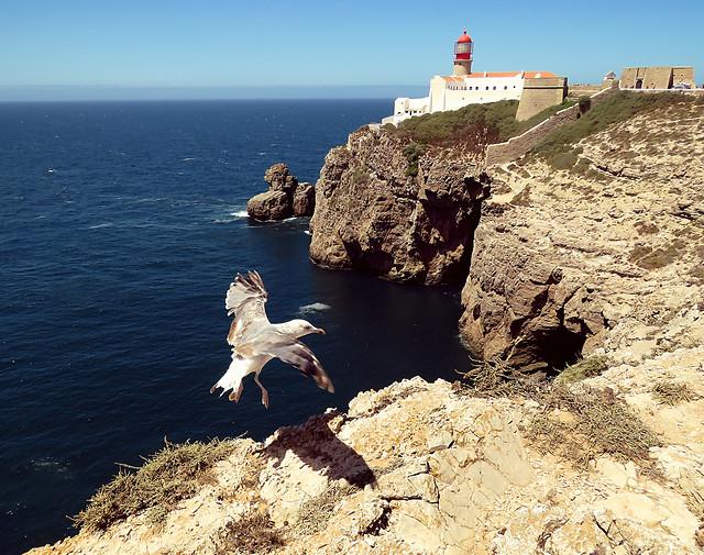 sea-cliff-sky-rock-ocean picture material