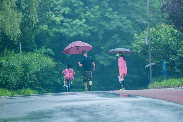 umbrella-rain-people-leisure-recreation picture material