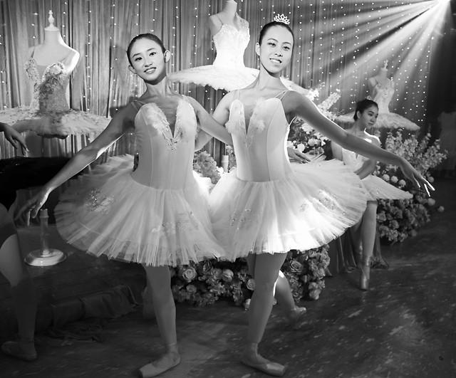 dancer-ballerina-ballet-dancing-ballet-dancer picture material