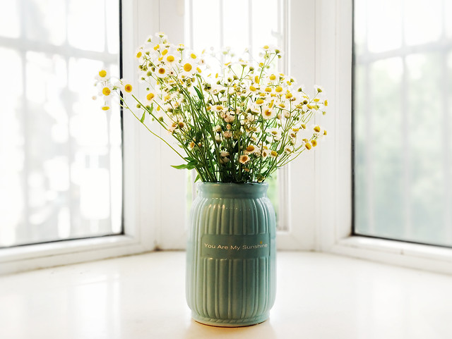 vase-indoors-window-no-person-leaf picture material