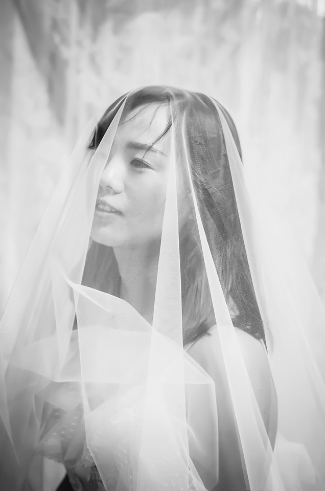 woman-bride-veil-girl-monochrome picture material