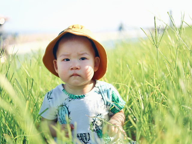 child-grass-field-summer-toddler picture material