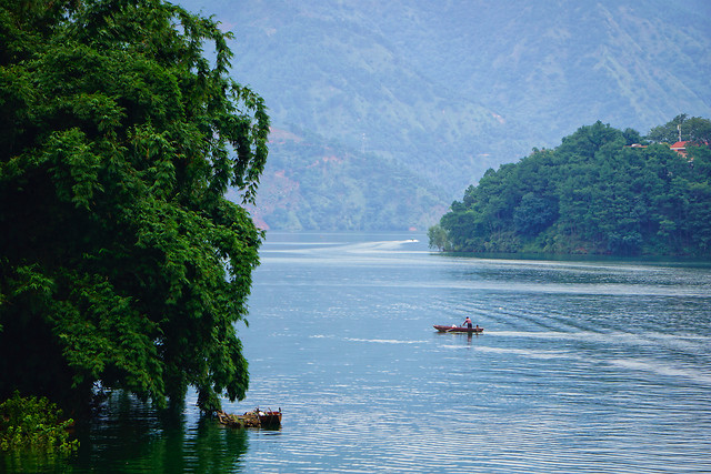 water-river-nature-tree-lake picture material