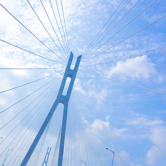 sky-high-blue-wire-no-person picture material
