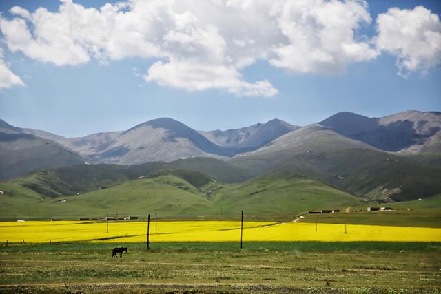 plateau-scenery 图片素材