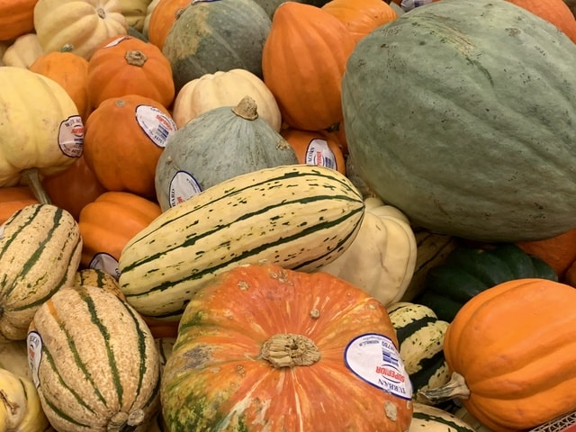vegetable-pumpkin-gourd-food-squash picture material