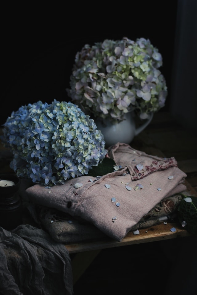 flower-still-life-rural-clothes-plant picture material