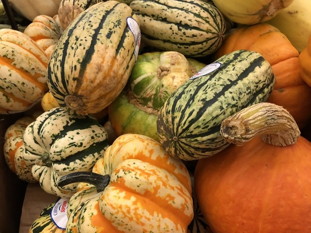 vegetable-food-gourd-squash-pumpkin picture material
