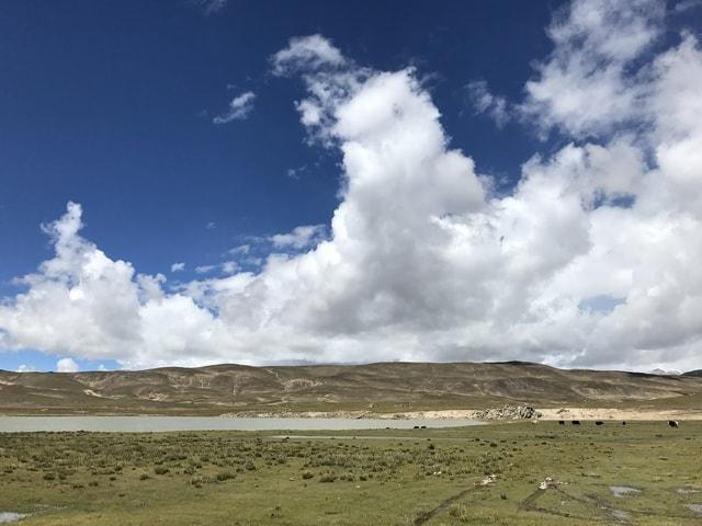 sky-grassland-cloud-landscape-grass picture material