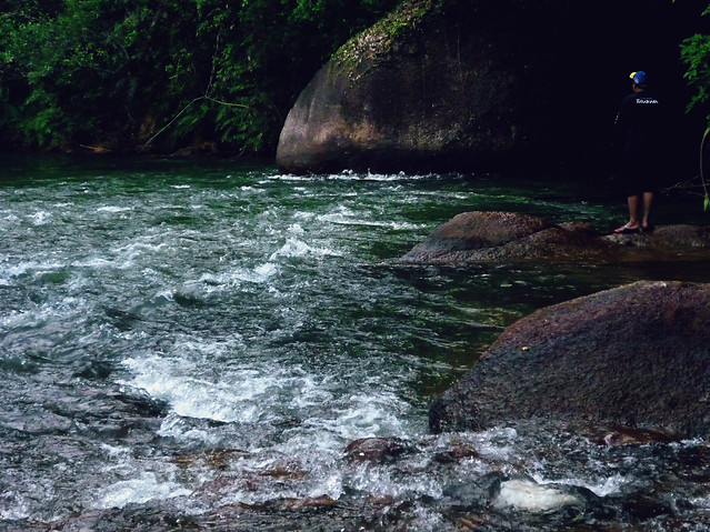 water-no-person-river-stream-waterfall picture material