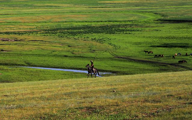 agriculture-landscape-field-grassland-farm picture material