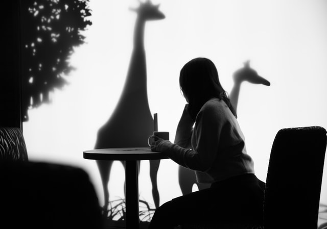 silhouette-sitting-monochrome-shadow-light picture material