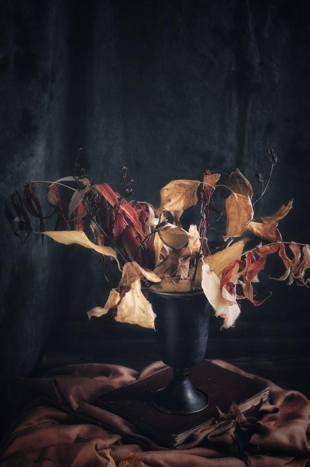 art-performance-dancer-painting-people 图片素材