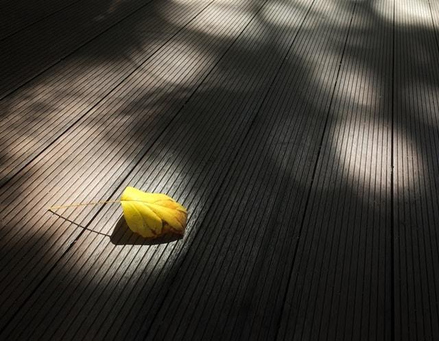 floor-wood-shadow-desktop-no-person picture material