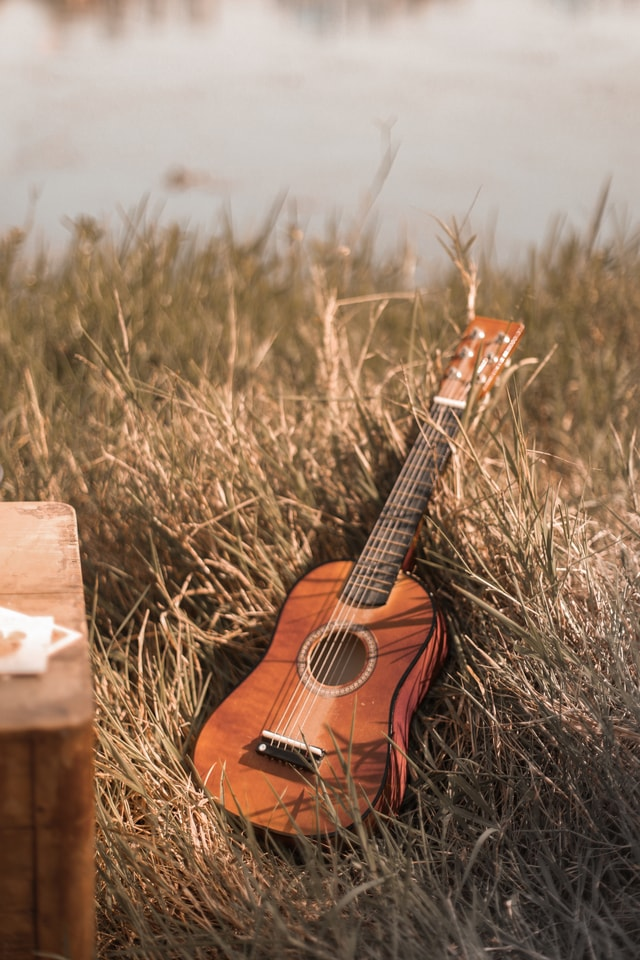 grass-guitar-string-instrument-ukulele-still-life picture material