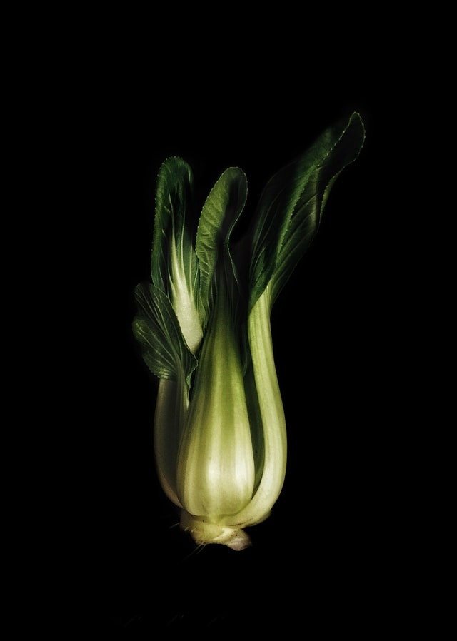 still-life-photography-plant-vegetable-plant-stem-organism picture material