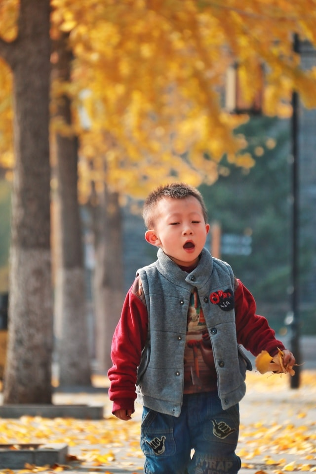child-boy-fun-happiness-fall picture material