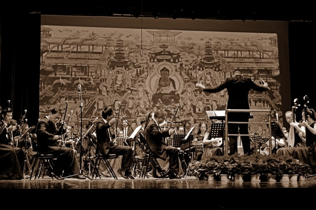 documentary-stage-orchestra-musician-darkness picture material