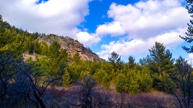 nature-sky-tree-mountain-leaf 图片素材
