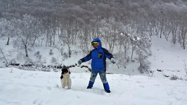 snow-winter-ice-cold-weather 图片素材