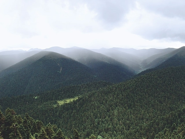 highland-ridge-mountainous-landforms-mountain-vegetation picture material