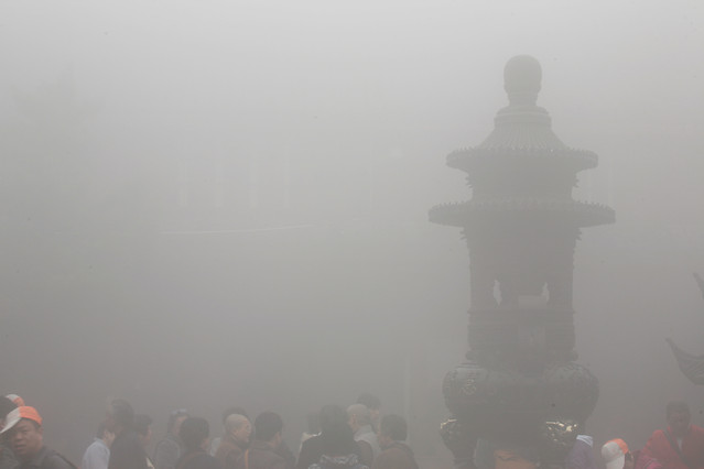 people-fog-adult-man-one picture material