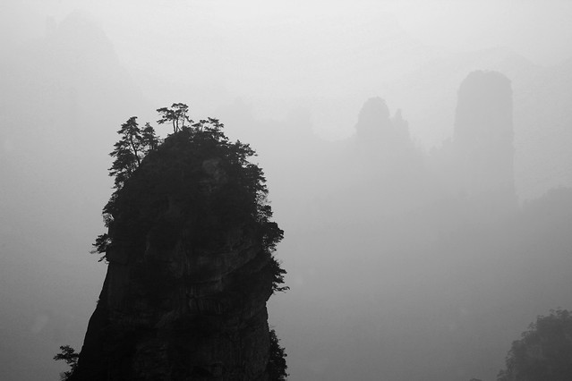 fog-no-person-mist-monochrome-people picture material