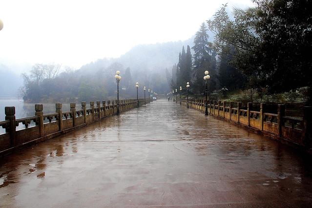 fog-water-mist-dawn-rain picture material