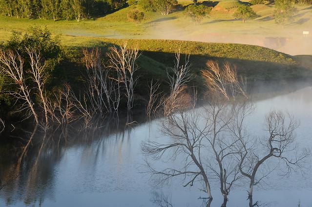 landscape-water-no-person-tree-river 图片素材