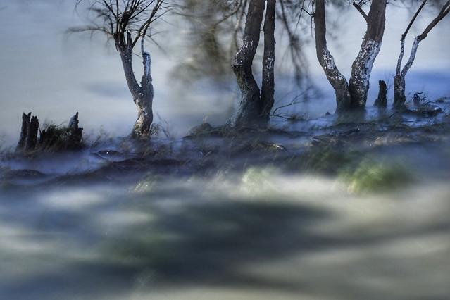 water-landscape-no-person-tree-nature 图片素材