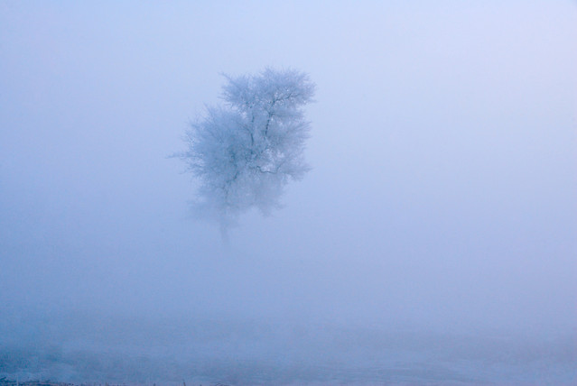 nature-winter-landscape-sky-fog picture material