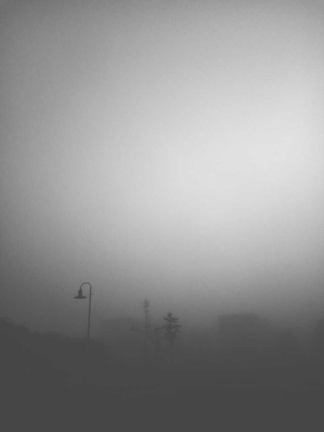 monochrome-fog-landscape-sky-art picture material