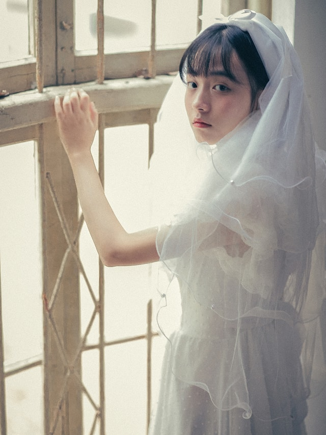 woman-girl-veil-dress-bride picture material