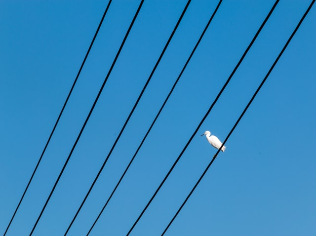 sky-blue-daytime-azure-line picture material
