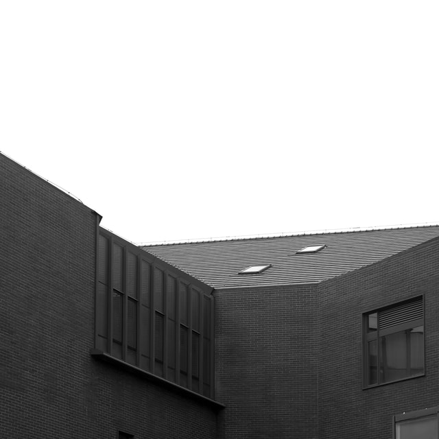photography-building-black-and-white-architecture-roof picture material