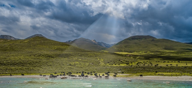 world-highland-ecosystem-sky-nature-reserve picture material