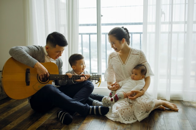 string-instrument-musical-instrument-plucked-string-instruments-guitar-family picture material